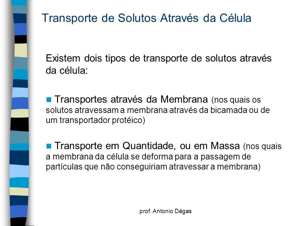 Transporte de Solutos Através da Célula
