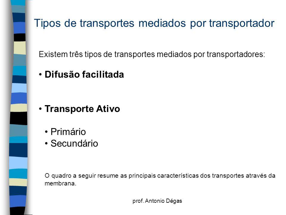 Tipos de transportes mediados por transportador