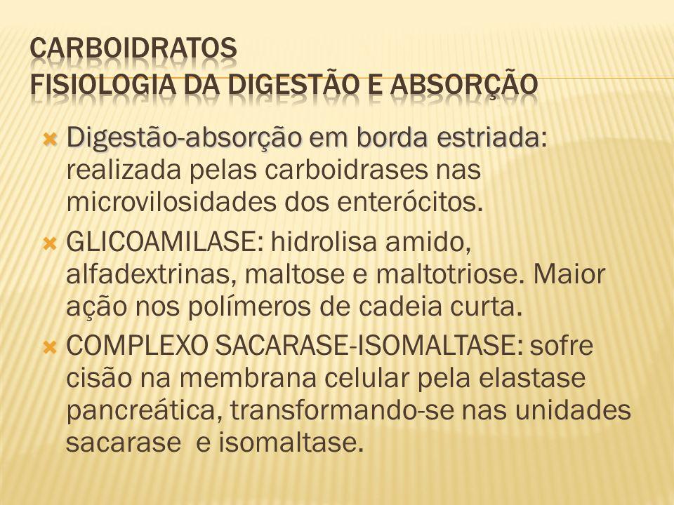 CARBOIDRATOS Fisiologia da digestão e absorção