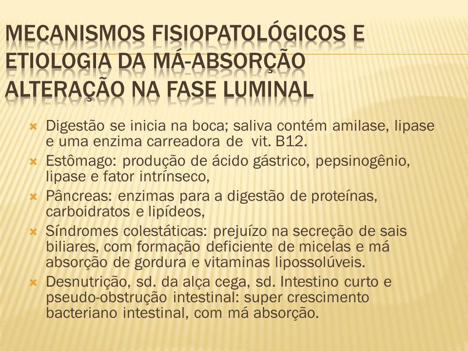 Mecanismos fisiopatológicos e etiologia da má-absorção ALTERAÇÃO NA FASE LUMINAL