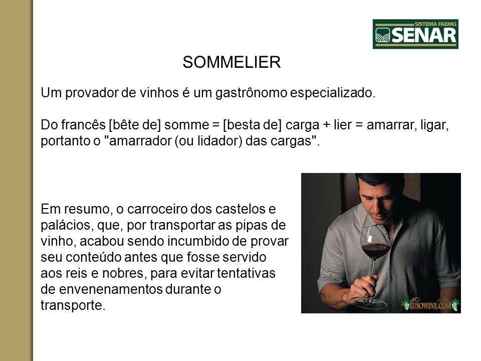 SOMMELIER Um provador de vinhos é um gastrônomo especializado.
