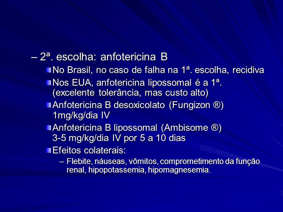 2ª. escolha: anfotericina B