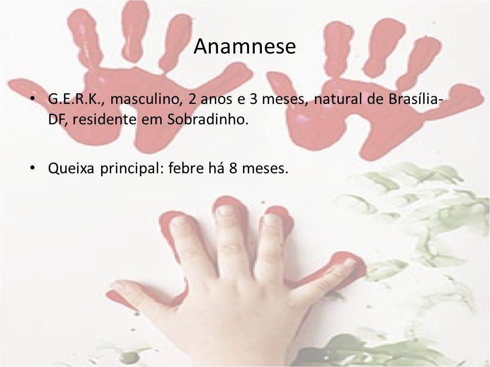 Anamnese G.E.R.K., masculino, 2 anos e 3 meses, natural de Brasília-DF, residente em Sobradinho.