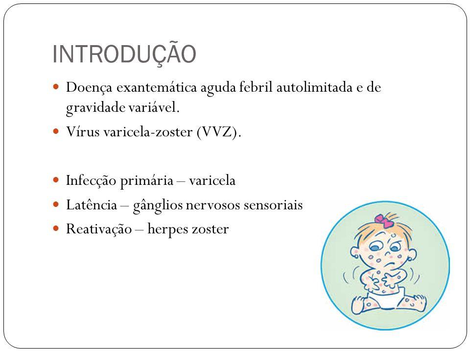 INTRODUÇÃO Doença exantemática aguda febril autolimitada e de gravidade variável. Vírus varicela-zoster (VVZ).