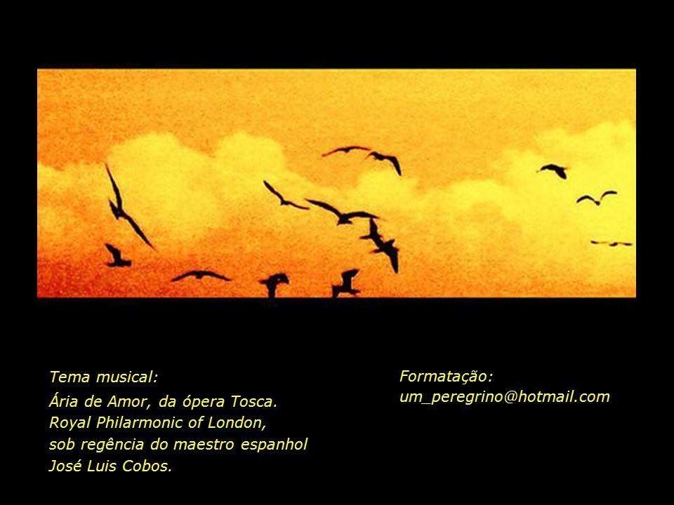 Tema musical: Ária de Amor, da ópera Tosca. Royal Philarmonic of London, sob regência do maestro espanhol José Luis Cobos.
