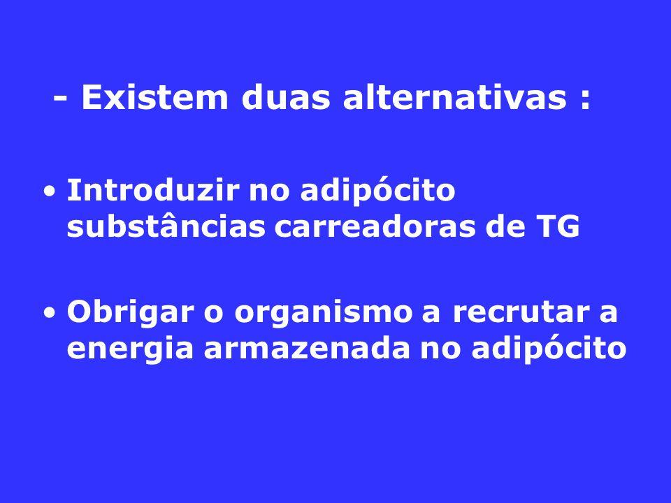 - Existem duas alternativas :