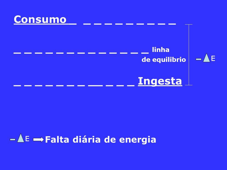 Falta diária de energia