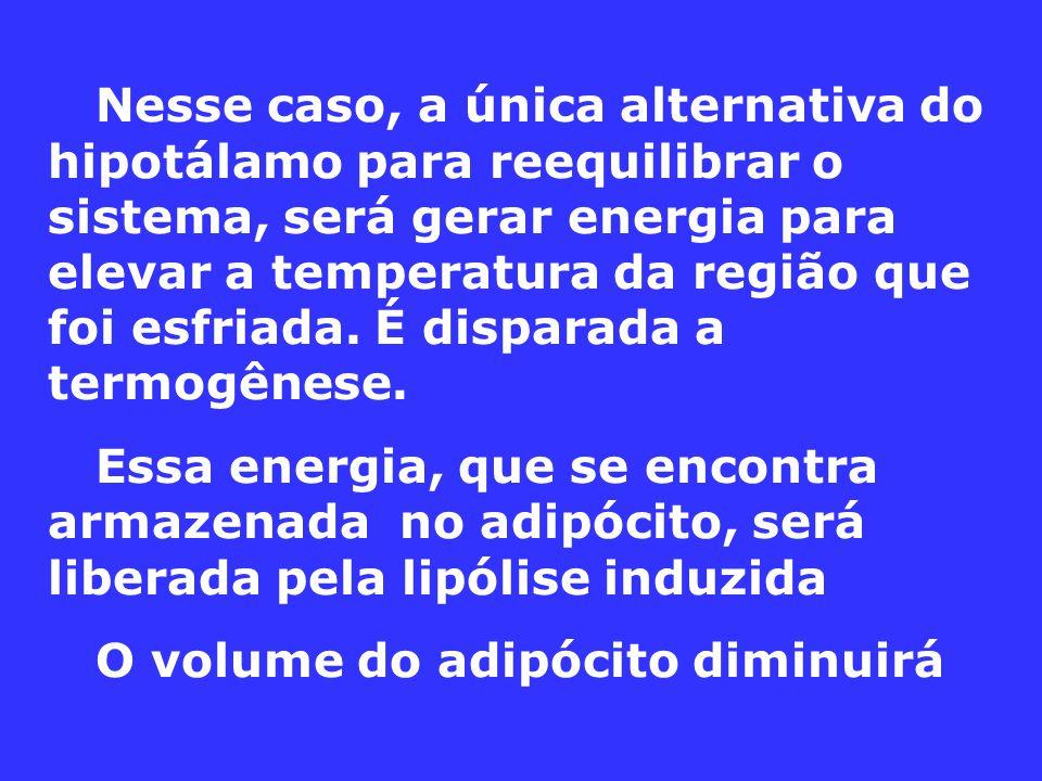 Nesse caso, a única alternativa do hipotálamo para reequilibrar o sistema, será gerar energia para elevar a temperatura da região que foi esfriada. É disparada a termogênese.