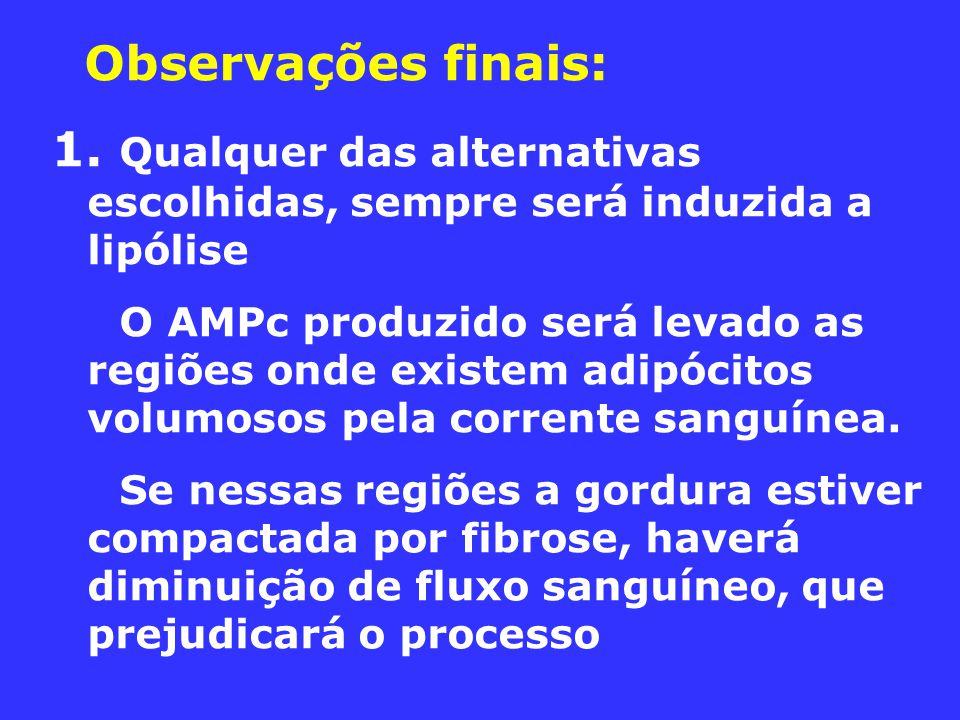 Observações finais: 1. Qualquer das alternativas escolhidas, sempre será induzida a lipólise.