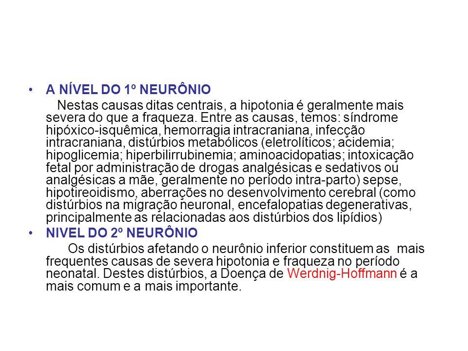 A NÍVEL DO 1º NEURÔNIO