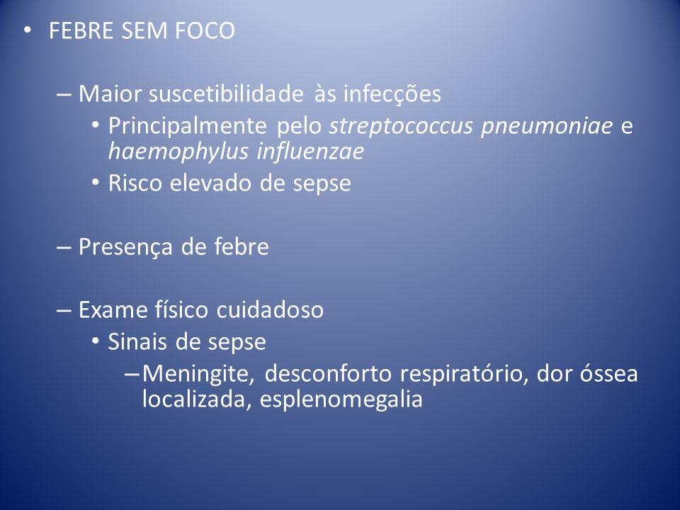 FEBRE SEM FOCO Maior suscetibilidade às infecções. Principalmente pelo streptococcus pneumoniae e haemophylus influenzae.