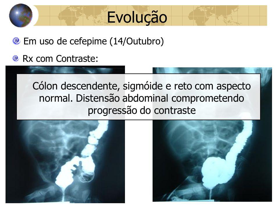 Evolução Em uso de cefepime (14/Outubro)