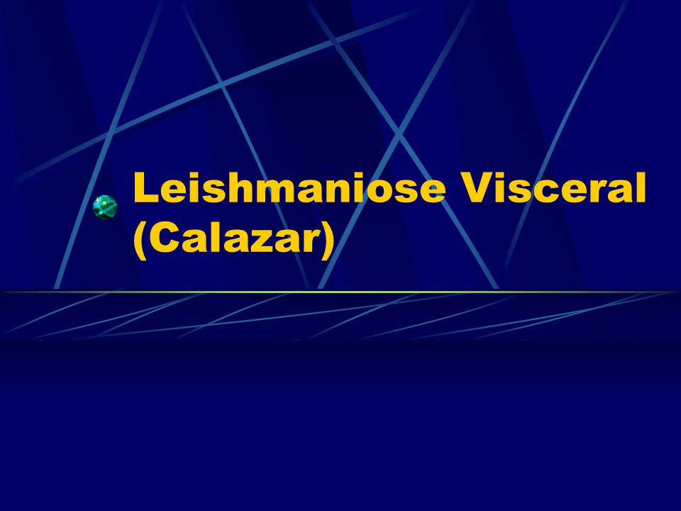 Leishmaniose Visceral (Calazar)