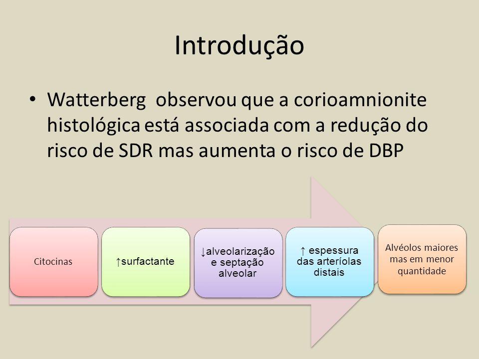 Introdução Watterberg observou que a corioamnionite histológica está associada com a redução do risco de SDR mas aumenta o risco de DBP.