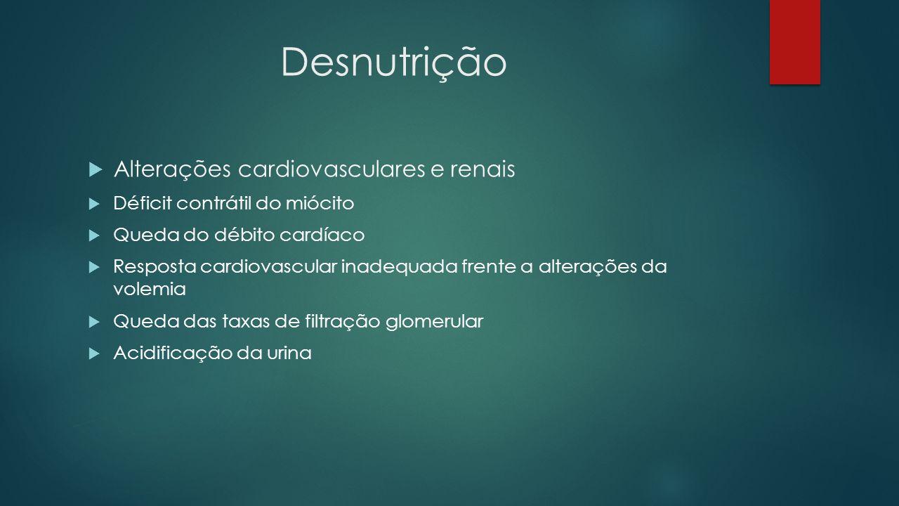 Desnutrição Alterações cardiovasculares e renais