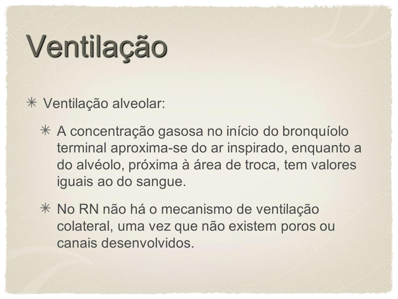 Ventilação Ventilação alveolar: