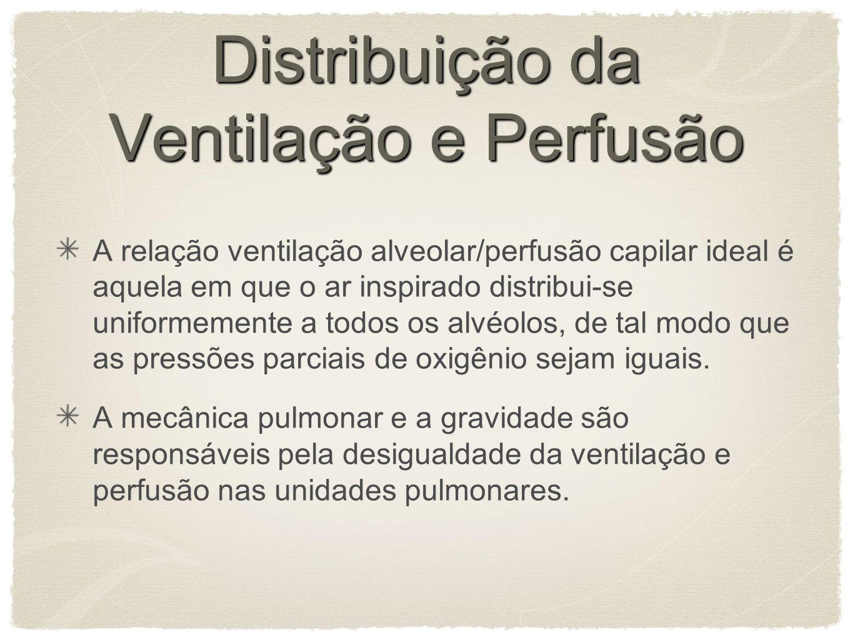 Distribuição da Ventilação e Perfusão