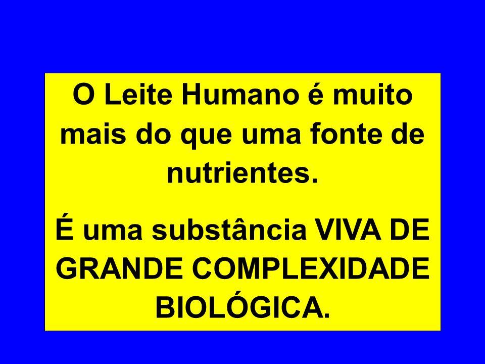 O Leite Humano é muito mais do que uma fonte de nutrientes.