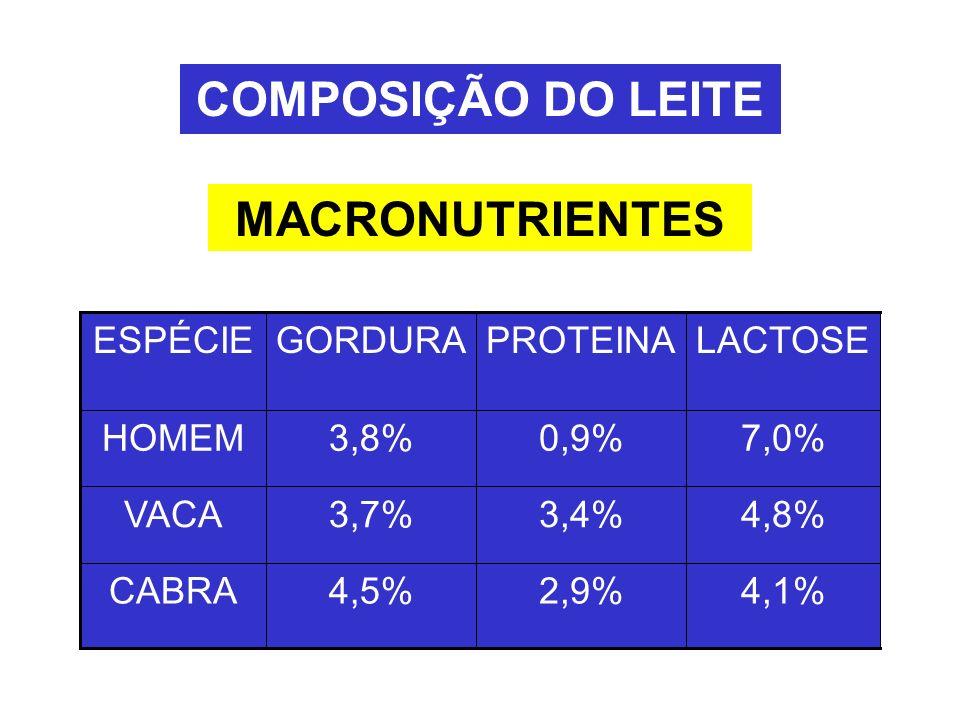 MACRONUTRIENTES COMPOSIÇÃO DO LEITE