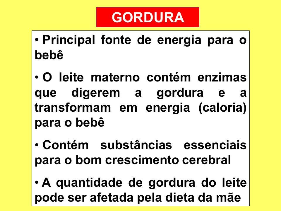 GORDURA Principal fonte de energia para o bebê