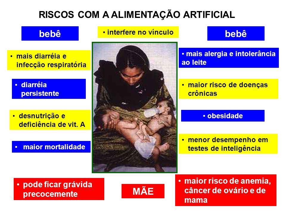 RISCOS COM A ALIMENTAÇÃO ARTIFICIAL