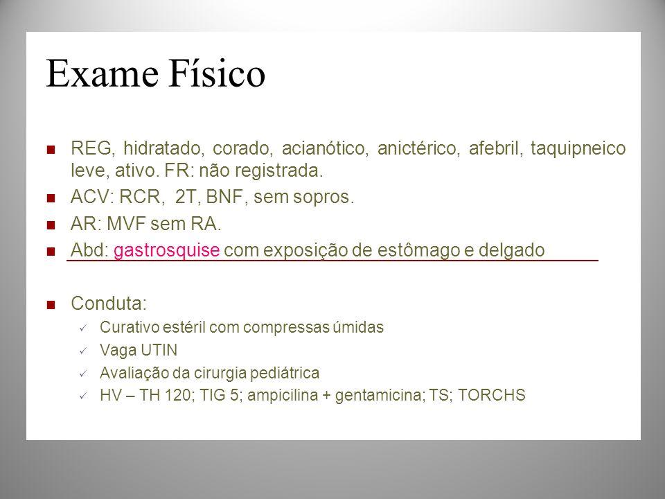 Exame Físico REG, hidratado, corado, acianótico, anictérico, afebril, taquipneico leve, ativo. FR: não registrada.
