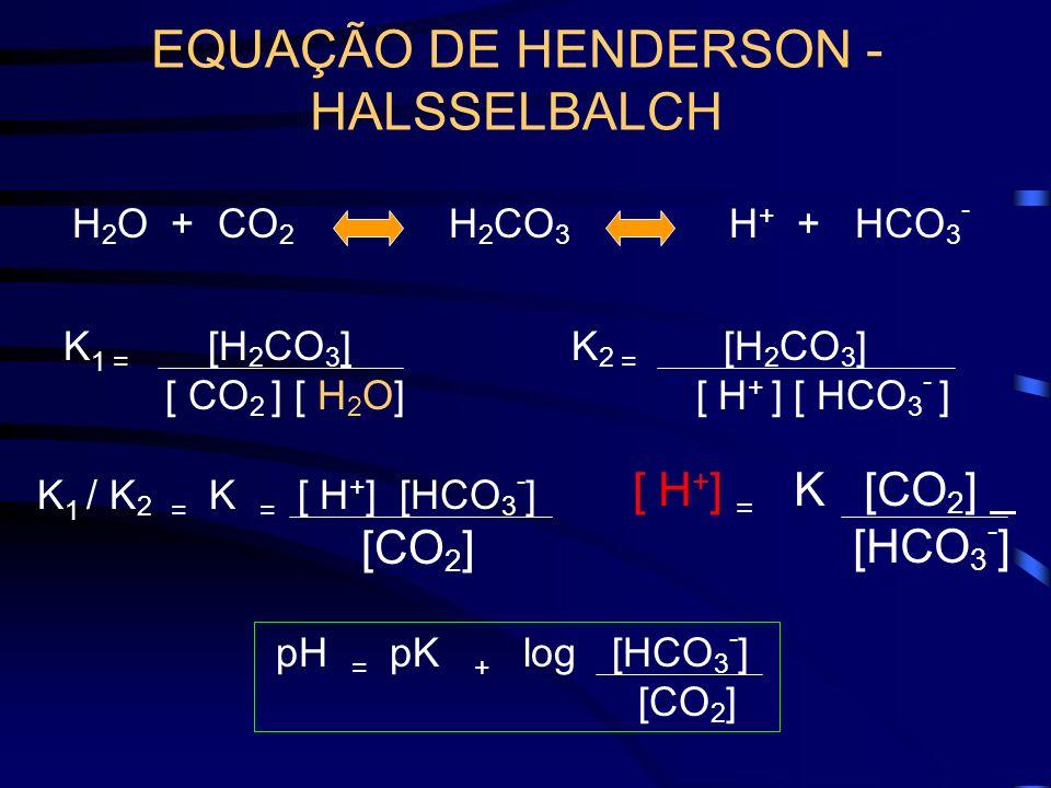 EQUAÇÃO DE HENDERSON - HALSSELBALCH