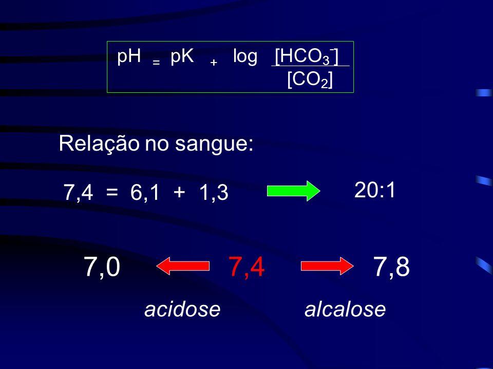 7,0 7,4 7,8 Relação no sangue: 20:1 7,4 = 6,1 + 1,3 acidose alcalose