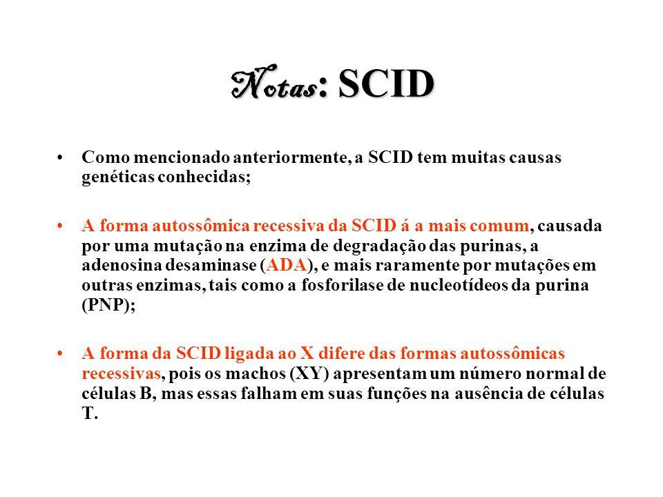 Notas: SCID Como mencionado anteriormente, a SCID tem muitas causas genéticas conhecidas;