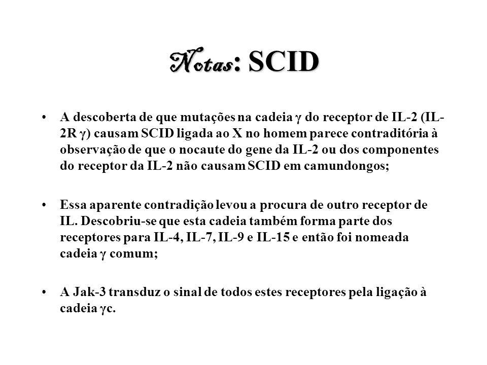 Notas: SCID