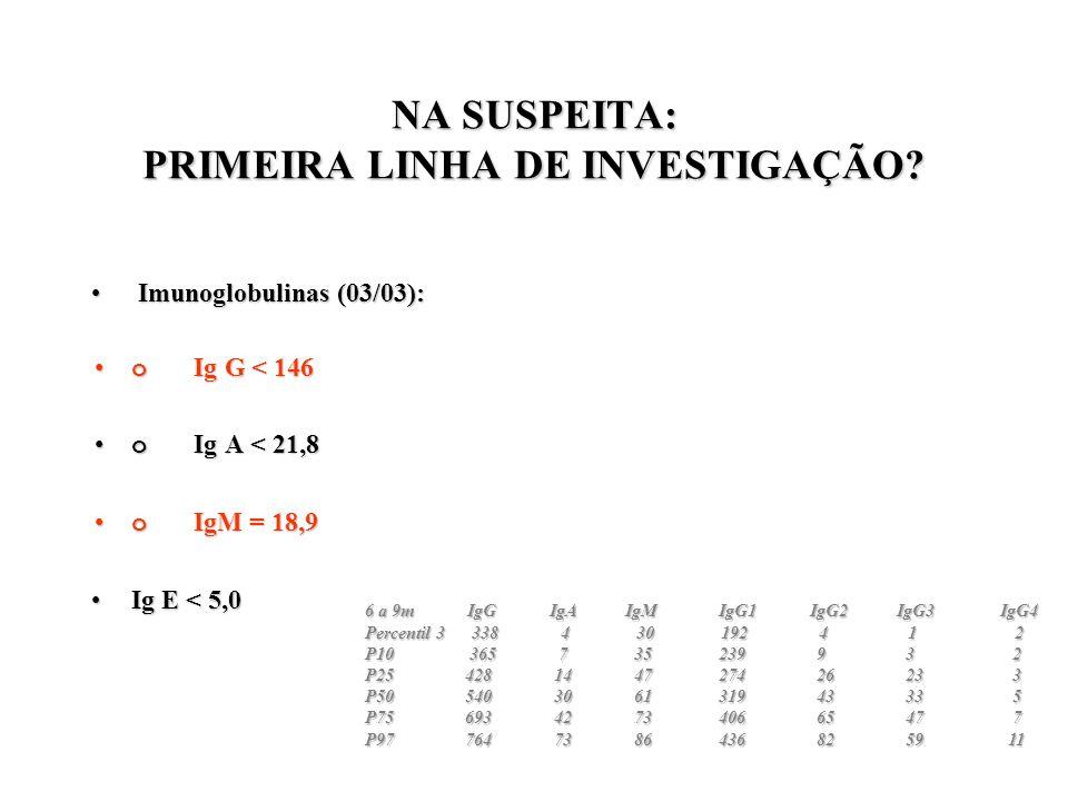 NA SUSPEITA: PRIMEIRA LINHA DE INVESTIGAÇÃO