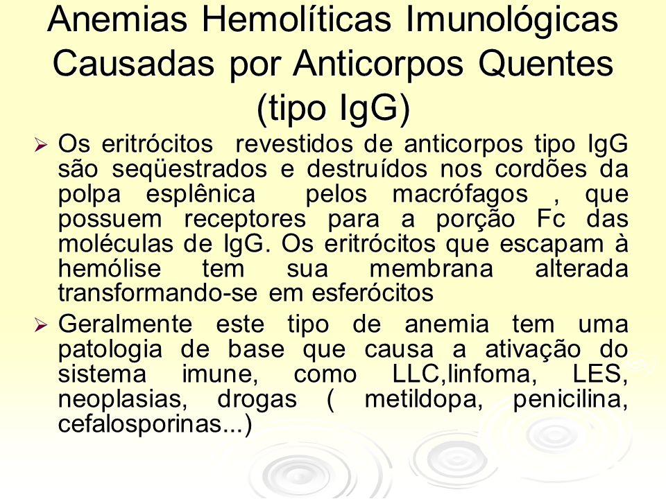 Anemias Hemolíticas Imunológicas Causadas por Anticorpos Quentes (tipo IgG)
