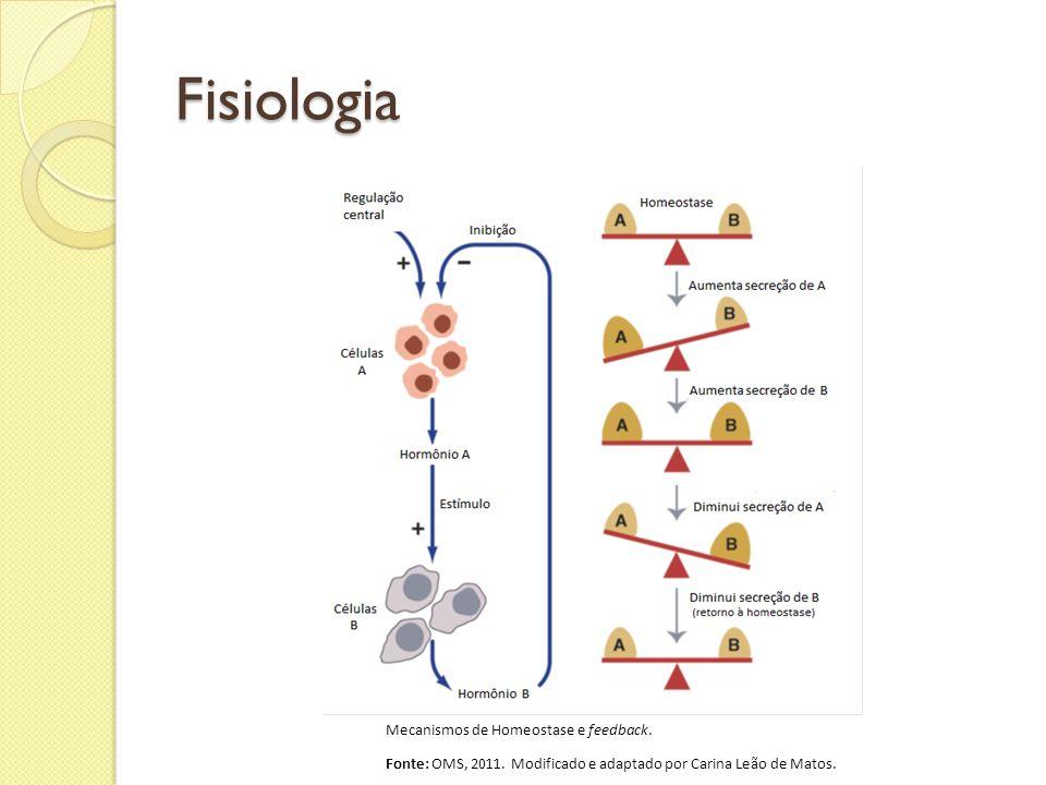 Fisiologia Mecanismos de Homeostase e feedback.