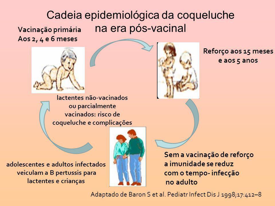 Cadeia epidemiológica da coqueluche na era pós-vacinal