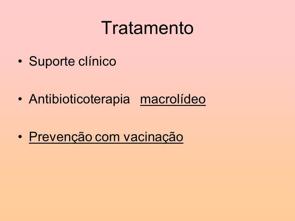 Tratamento Suporte clínico Antibioticoterapia macrolídeo