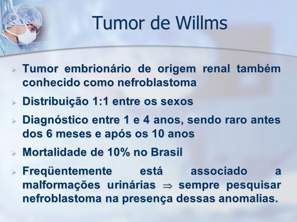 Tumor de Willms Tumor embrionário de origem renal também conhecido como nefroblastoma. Distribuição 1:1 entre os sexos.