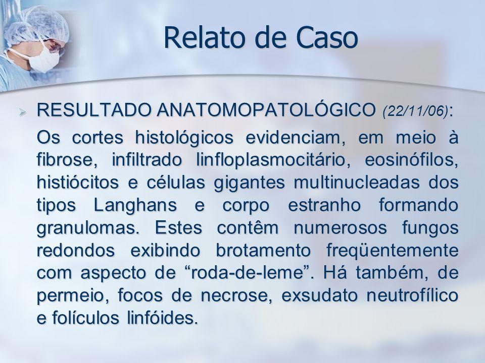 Relato de Caso RESULTADO ANATOMOPATOLÓGICO (22/11/06):