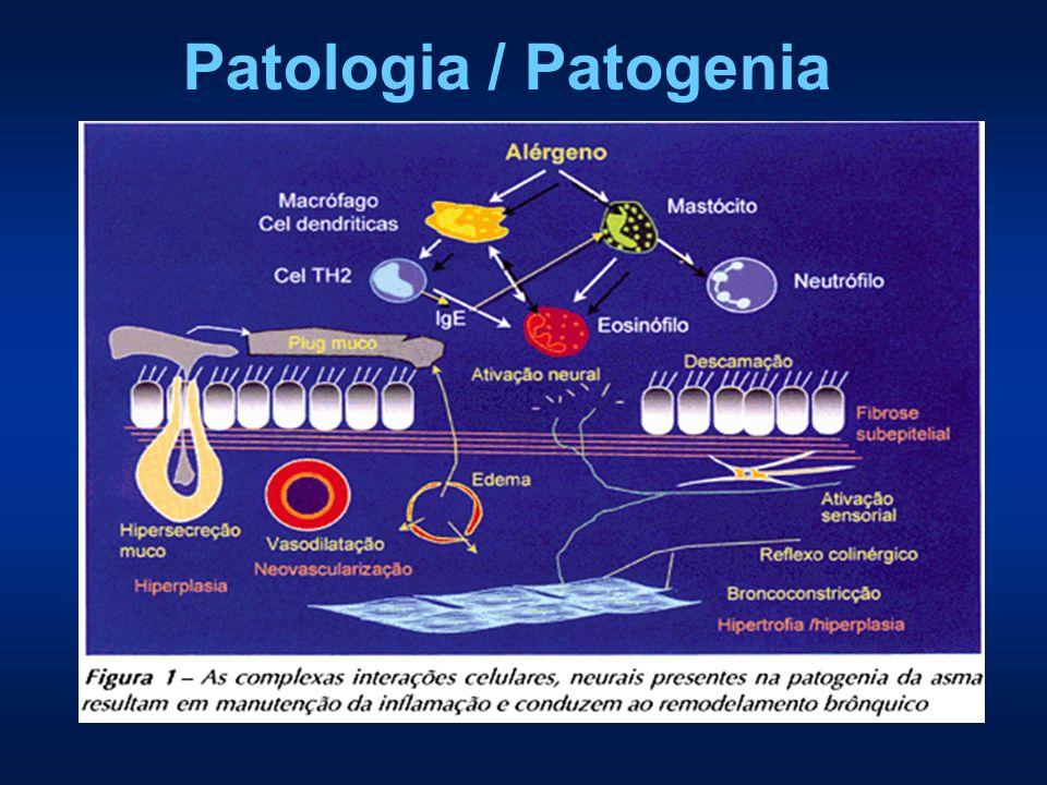 Patologia / Patogenia