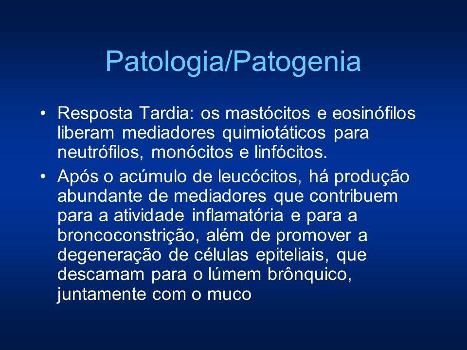 Patologia/Patogenia Resposta Tardia: os mastócitos e eosinófilos liberam mediadores quimiotáticos para neutrófilos, monócitos e linfócitos.