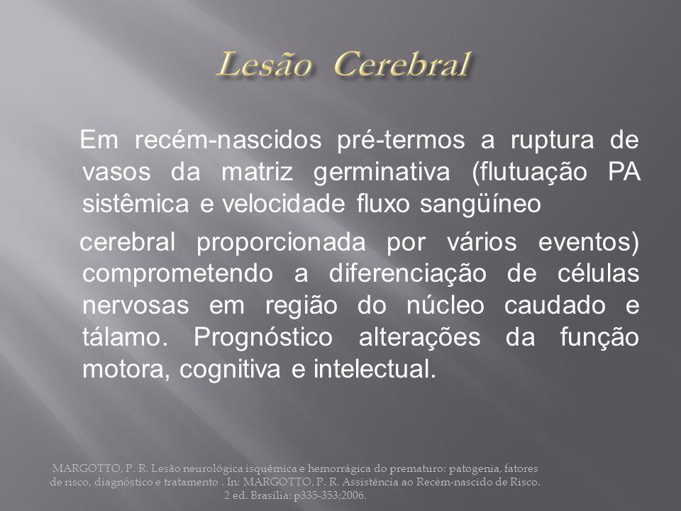 Em recém-nascidos pré-termos a ruptura de vasos da matriz germinativa (flutuação PA sistêmica e velocidade fluxo sangüíneo