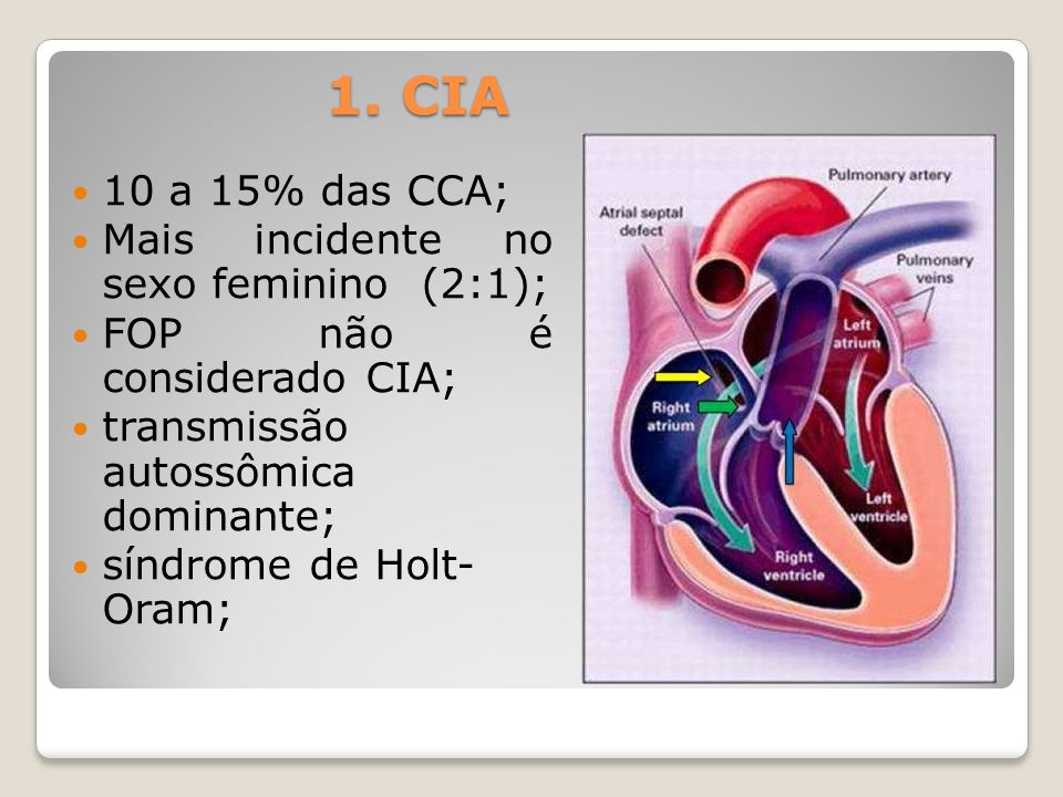 1. CIA 10 a 15% das CCA; Mais incidente no sexo feminino (2:1);
