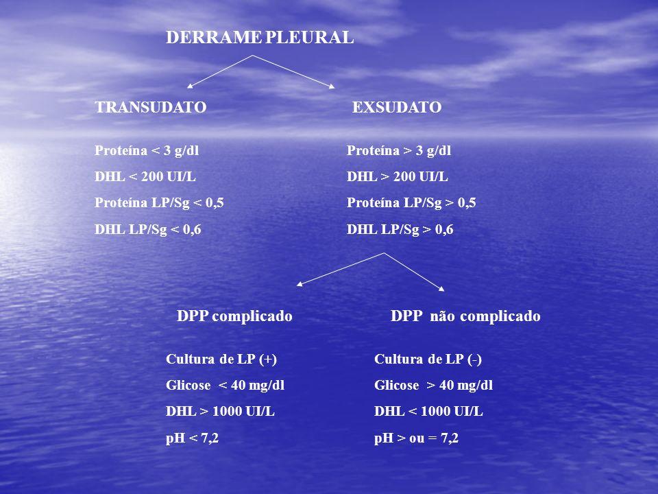 DERRAME PLEURAL TRANSUDATO EXSUDATO DPP complicado DPP não complicado