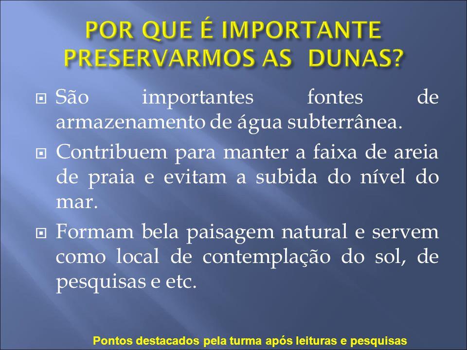 São importantes fontes de armazenamento de água subterrânea.