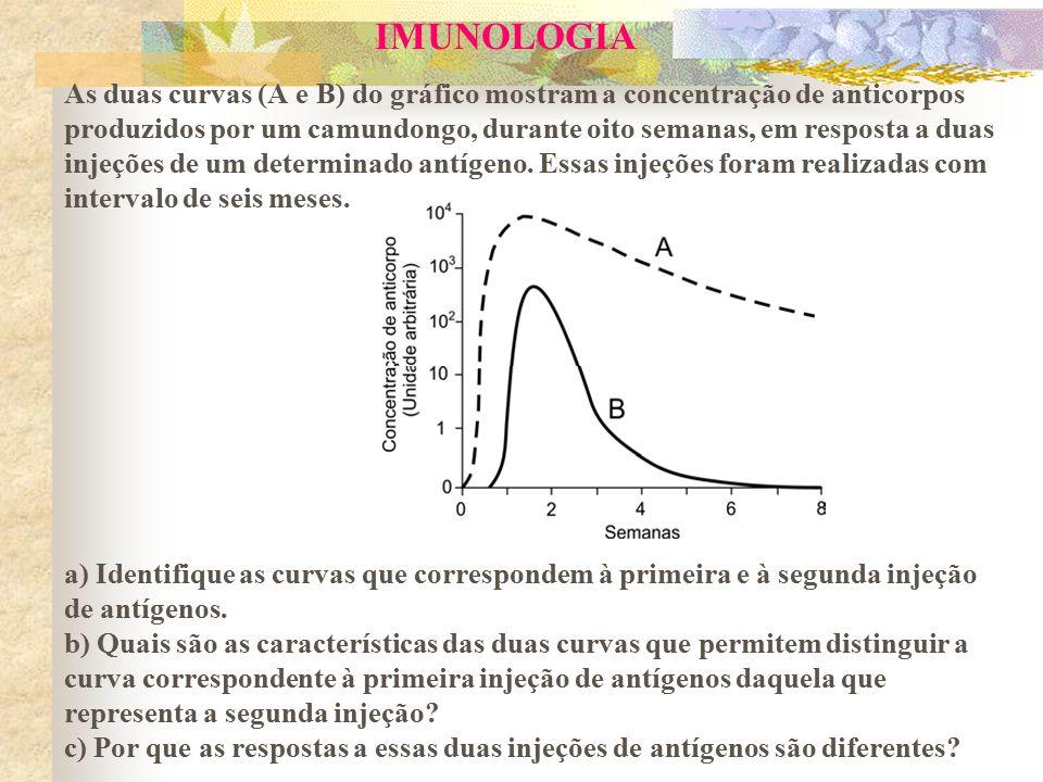 IMUNOLOGIA As duas curvas (A e B) do gráfico mostram a concentração de anticorpos produzidos por um camundongo, durante oito semanas, em resposta a duas injeções de um determinado antígeno.