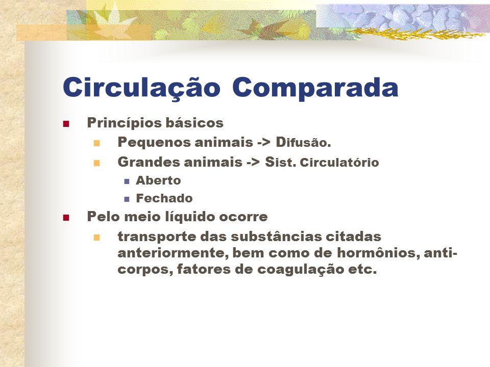 Circulação Comparada Princípios básicos