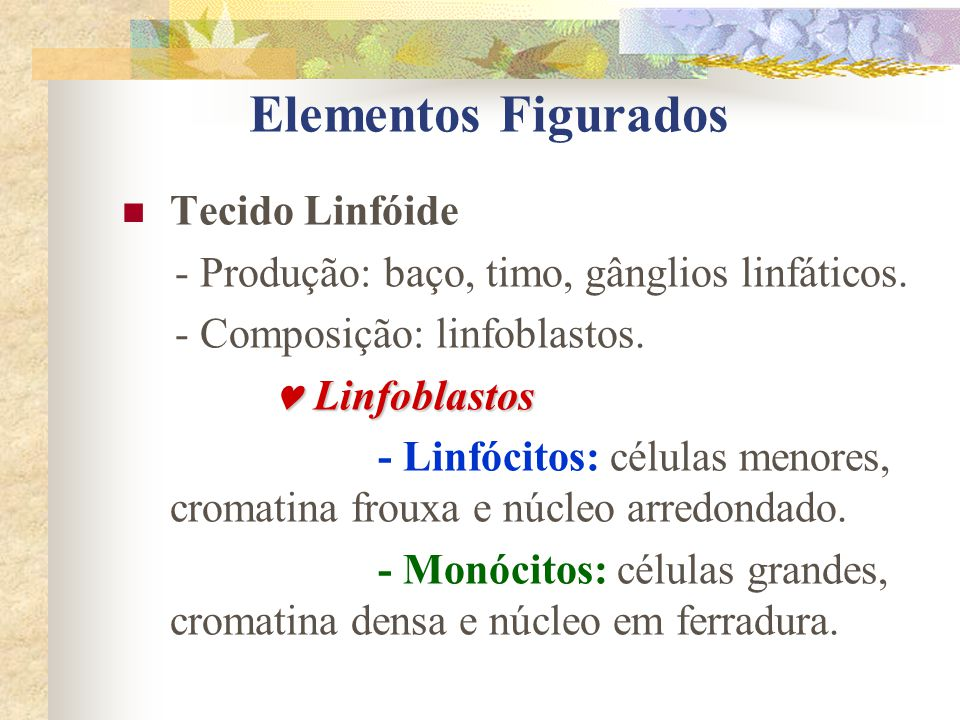 Elementos Figurados Tecido Linfóide