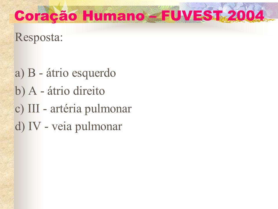 Coração Humano – FUVEST 2004