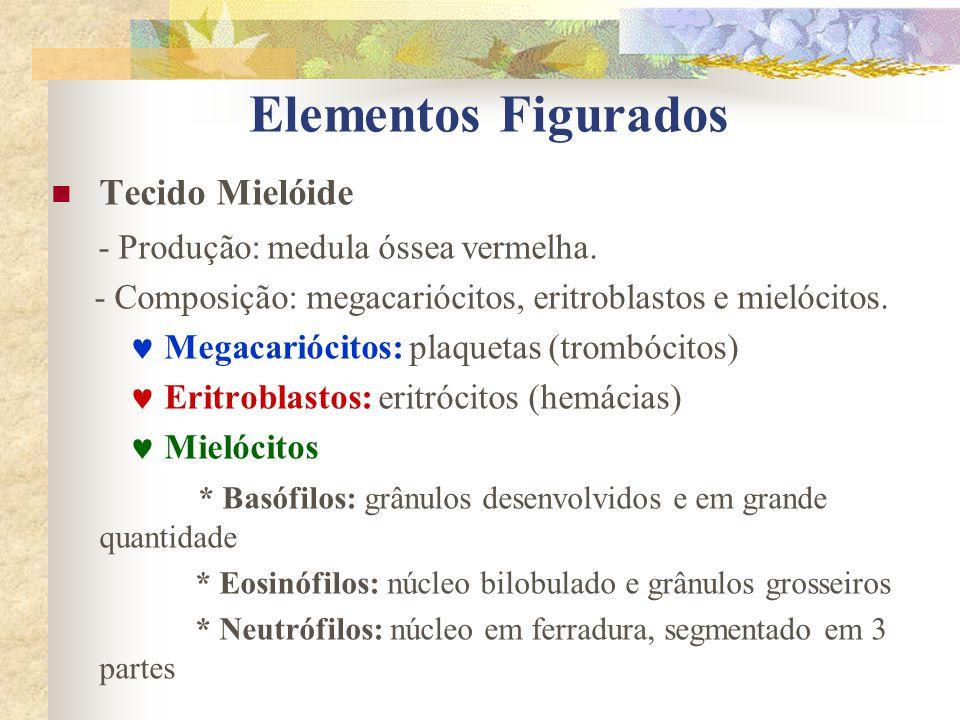 Elementos Figurados Tecido Mielóide - Produção: medula óssea vermelha.