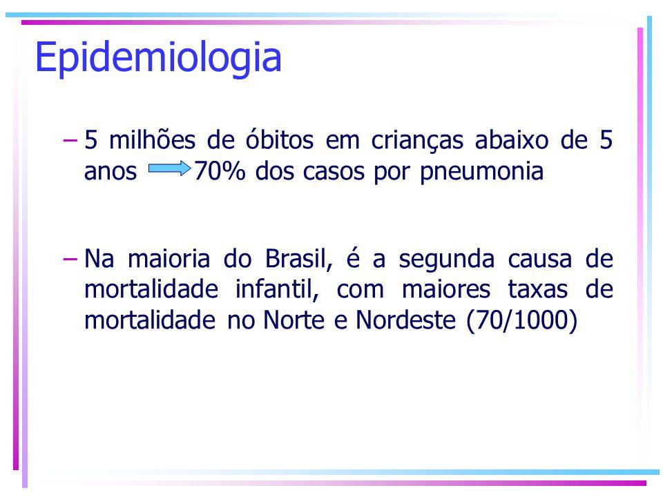 Epidemiologia 5 milhões de óbitos em crianças abaixo de 5 anos 70% dos casos por pneumonia.