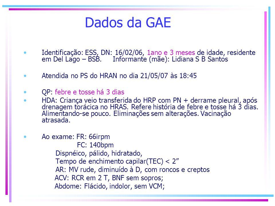 Dados da GAE Identificação: ESS, DN: 16/02/06, 1ano e 3 meses de idade, residente em Del Lago – BSB. Informante (mãe): Lidiana S B Santos.